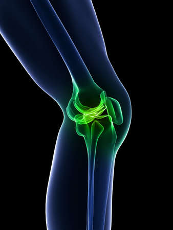 legs: x-ray knee - healthy knee joint Stock Photo