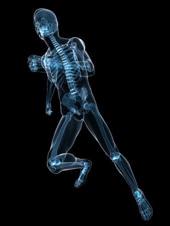 x-ray - running skeleton photo