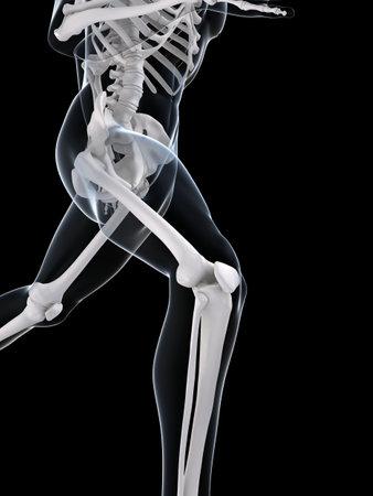 with stamina: running skeleton