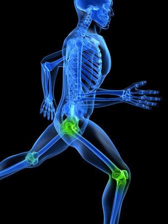 articulaciones: ejecutando el esqueleto con articulaciones saludables Foto de archivo