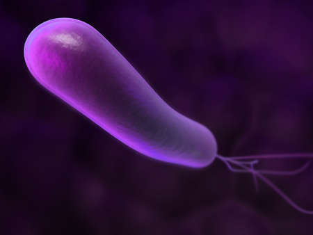 microbes:  heliobacter - close up Stock Photo