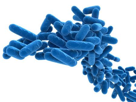 bacterie: bacteriën - close up Stockfoto