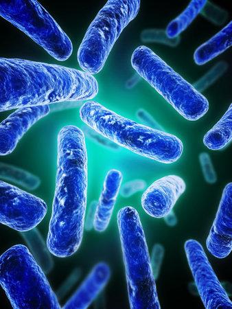 bacterie: bacteriën - dichten