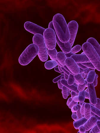 bacteria - close up photo