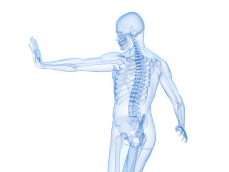 immunodeficiency: male skeleton blocking