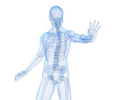immunodeficiency: male skeleton blocking