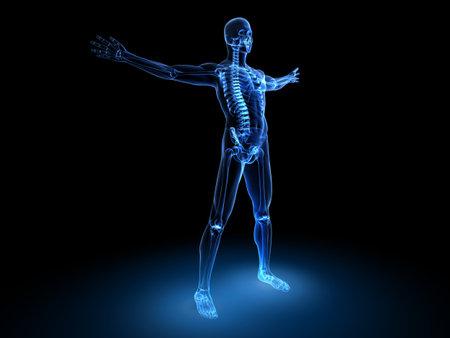 x-ray male model  photo