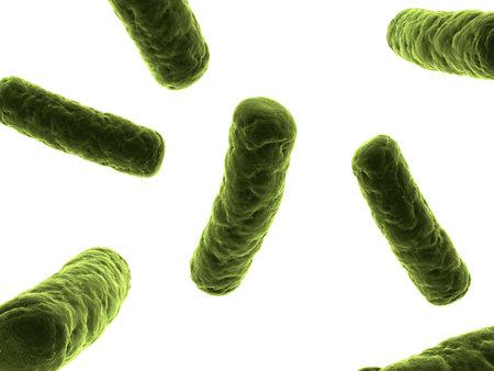 bacteria illustration Stock Illustration - 7286265