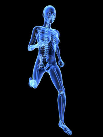 skeletal: female jogger - x-ray