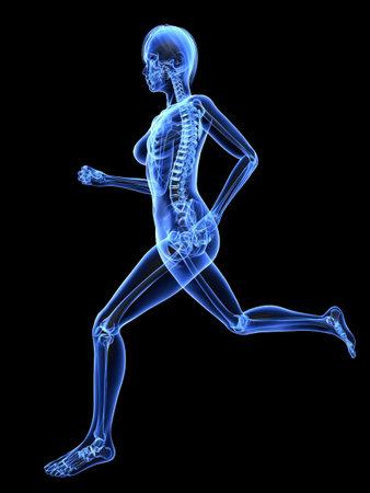 skeleton anatomy: female jogger - x-ray