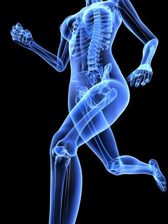 female jogger - x-ray Stock Photo - 7286257