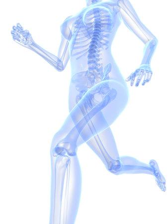 female jogger: libros femenina - rayos x