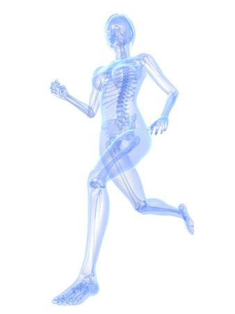 stamina: female jogger - x-ray