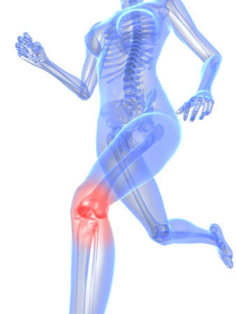 running skeleton with highlighted knee