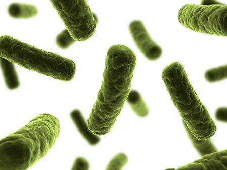 bacteria illustration Stock Illustration - 7286263