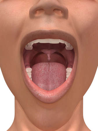 opened mouth: human mouth