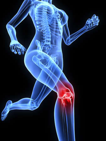 anatomy body: running skeleton with highlighted knee