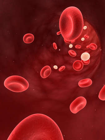 leucocytes in blood  Stock Photo