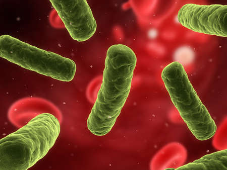 bacteria illustration  Stock Illustration - 7286080