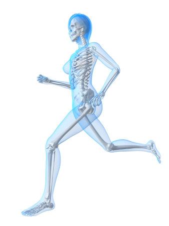 running  female skeleton  photo