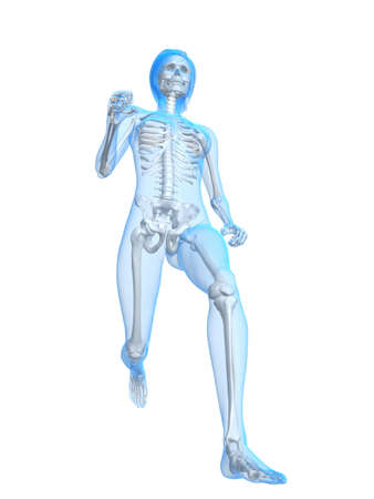 healtcare: running  female skeleton
