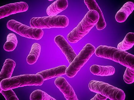 e coli: bacteria illustration