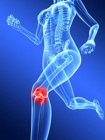 ache: running female skeleton with highlighted knee joint Stock Photo