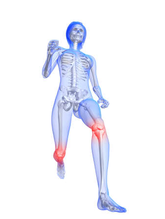 with stamina: running female skeleton with highlightedknee  joints
