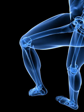 transparent legs with healthy joints photo