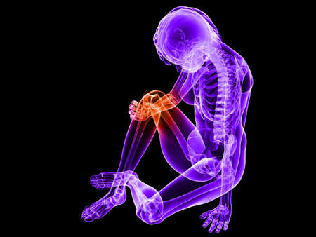 sitting female skeleton with highlighted knee photo