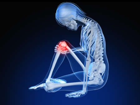 sitting female skeleton with highlighted knee Stock Photo - 7165049