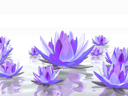 lotus flowers on water Stock Photo - 7165143