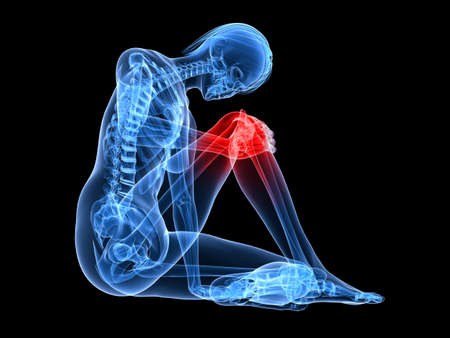 sitting female skeleton with highlighted knee Stock Photo - 7165144