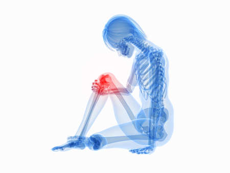 cartilage: sitting female skeleton with highlighted knee
