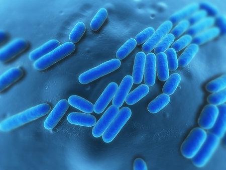 bacteria illustration Stock Illustration - 7148840
