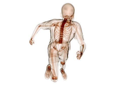 jogger - running human skeleton photo
