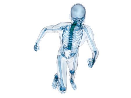 jogger: jogger - running human skeleton