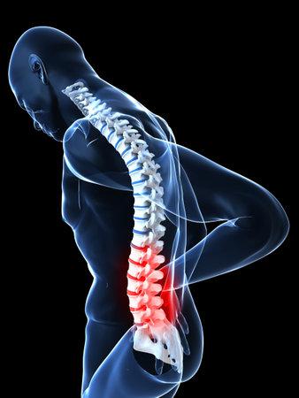 spina dorsale: corpo maschile trasparente con dorso evidenziato  Archivio Fotografico