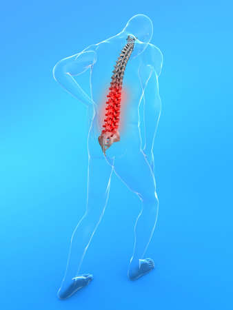 chest pain: transparent male body with highlighted spine Stock Photo