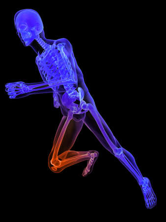 physical therapy: running skeleton with highlighted knee
