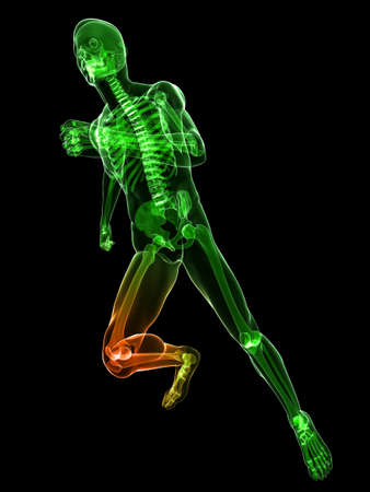 running skeleton with highlighted knee photo