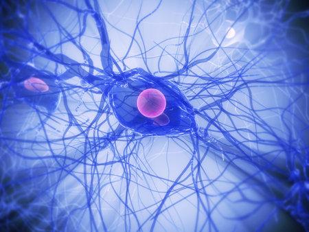 las células nerviosas Foto de archivo