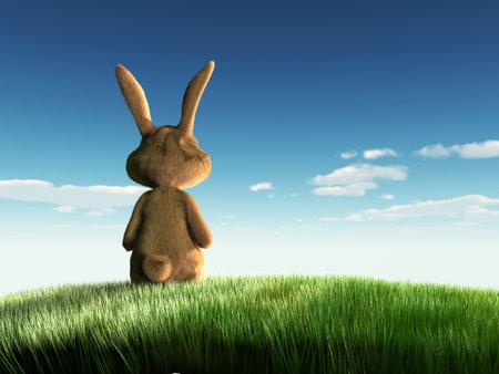 grassfield: lonley easter bunny