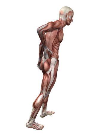 backache: backache illustration  Stock Photo