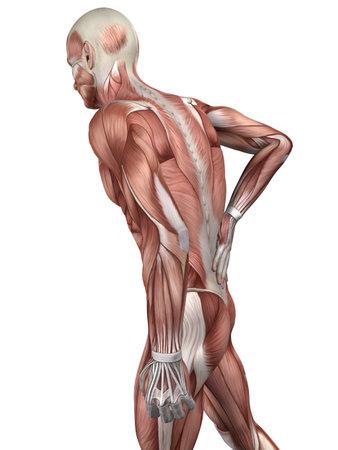 dolor en el pecho: dolor de espalda ilustraci�n