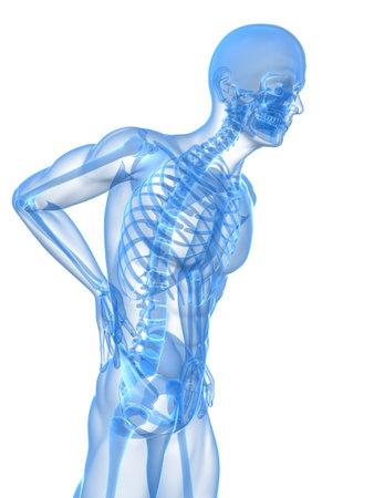 anatomy skeletal: backache illustration  Stock Photo