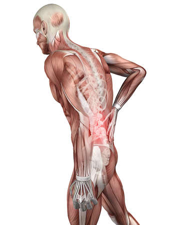 painful back illustration  Stock Photo