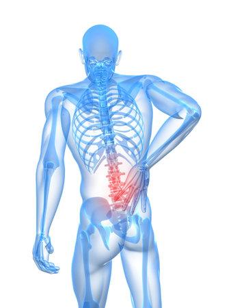 columna vertebral humana: Ilustraci�n de dolor de espalda  Foto de archivo