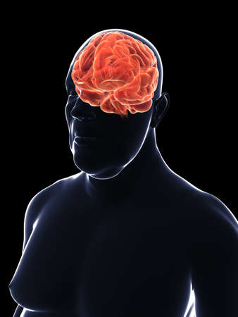 oversized: overweight male - brain  Stock Photo