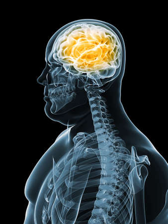 obese man: overweight male - brain  Stock Photo